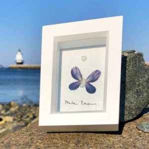 Mussel Shell, Butterfly artwork in frame.
