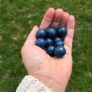 Chocolate Covered Blueberries in a hand.