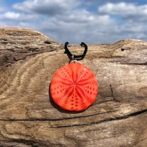 Coral Sand Dollar Necklace